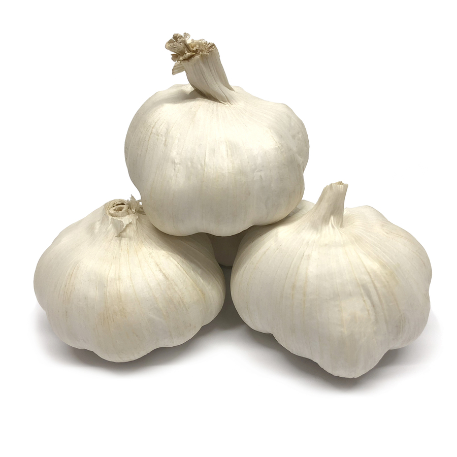 Knoblauch 1 Knolle
